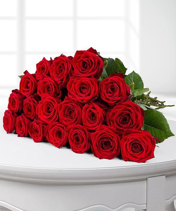 Rote Rosen verschicken
