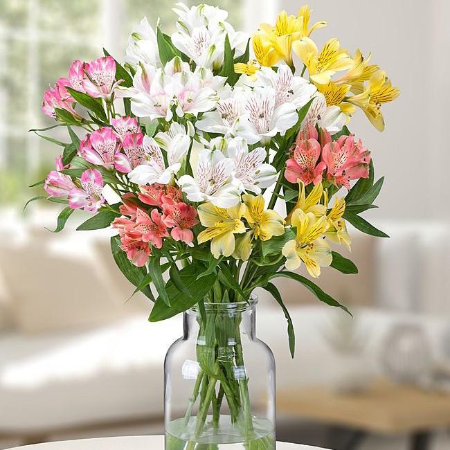 Blumenstrauß Zuneigung