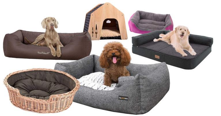 Schlafplatz für den Hund