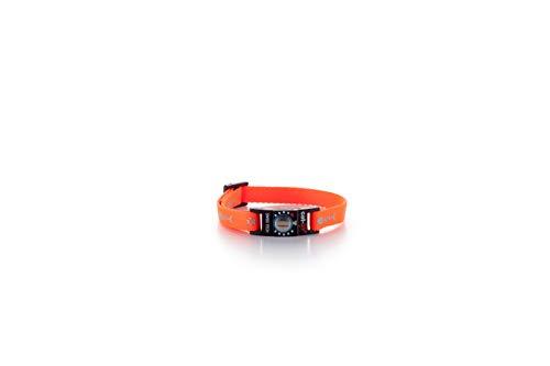 cat-life Katzen Sicherheitshalsband Sicherheitsverschluss Individuell Einstellbar (Fish & paw orange,...