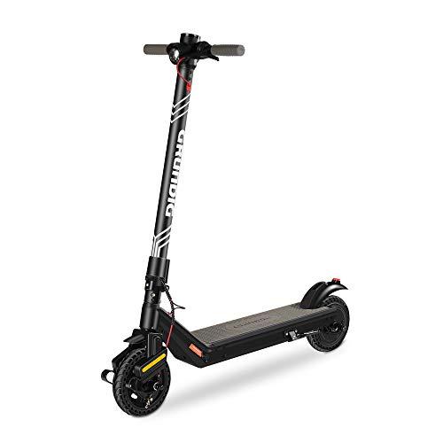 GRUNDIG Elektroroller für Erwachsene, 380W Motor Elektro Scooter Faltbarer E-Roller mit 7.8Ah Batterie...