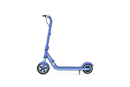 Ninebot eKickScooter ZING E8 (blau)