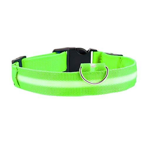 Nylon Haustier Hundehalsband LED Light Night Glowing Pet Supplies Katze Hundehalsband Haustier, Für...