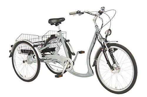 Wild Eagle Dreirad Elektro 26/24' Made in Germany Silber