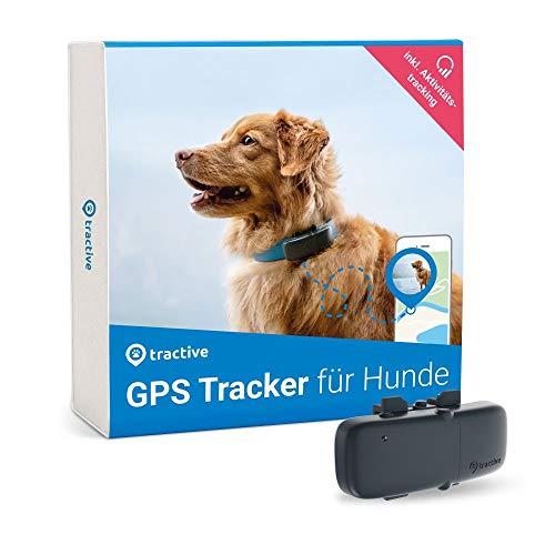 Tractive GPS Tracker für Hunde, unlimitierte Reichweite, Aktivitätstracking, wasserfest, Hundeortung,...