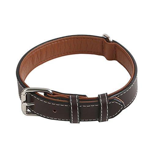 Vivifying Hundehalsband aus Leder, Verstellbar von 36,3 cm bis 46,5 cm Halsband aus Echtem Leder für...