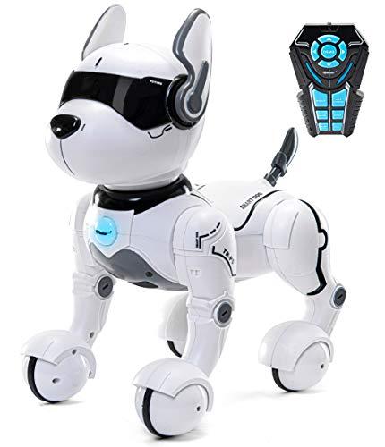 Top Race ferngesteuertes Roboter Hundespielzeug für Kinder, tanzt interaktiv & intelligent zum Beat,...