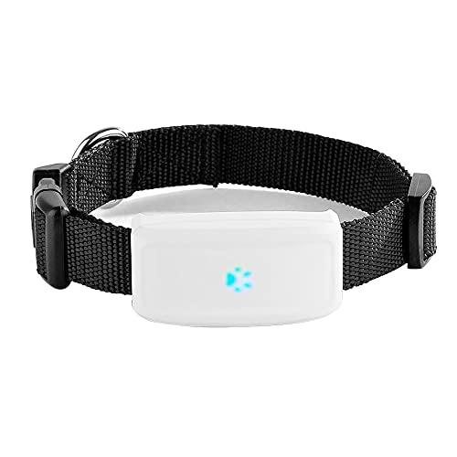 GPS-Tracker für Katzen Kleine Hunde Haustiere mit Halsband Wasserdicht IP66 500mAh Echtzeit-Tracking...