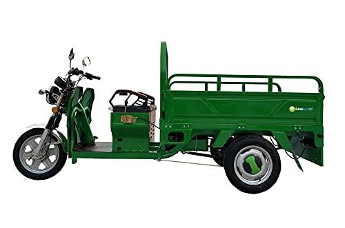 GinkGo C1 E-Cargo-Trike grün E-Lastenrad E-Lastentrike E-Lastendreirad Straßenzulassung Lastenscooter...