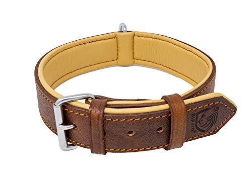 Riparo Echtes Leder Verstellbares K-9 Hundehalsband mit Zusätzlicher Verstärkung (L: 3,8CM Breit für...