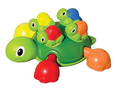 Bade-Schildkröte
