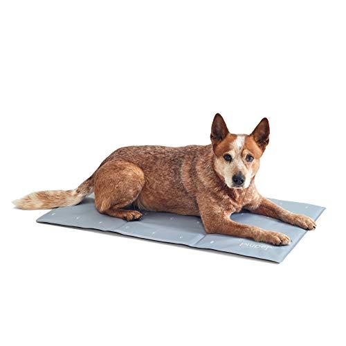 PiuPet® Kühlmatte für Hunde 90 x 50cm - Hundematte grau - passend auch für große Hunde und Katzen -...