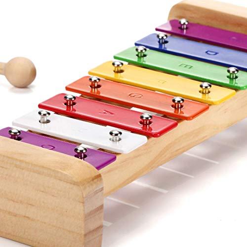 SCHMETTERLINE Harmonisches Xylophon für Kinder aus Holz mit Notenheft – Glockenspiel und Liederbuch...
