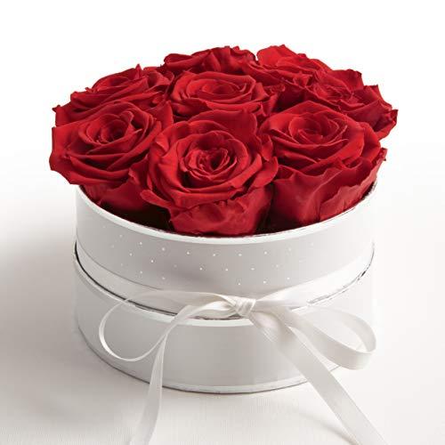 ROSEMARIE SCHULZ Heidelberg Rosenbox weiß rund Infinity Rosen rot - Flowerbox 8 Infinity Rosen...