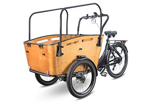 Elektrofahrrad Qivelo Curve 3 DR7 250W Pedelec E-Bike Lastenfahrrad 26 Zoll 7-Gang Shimano