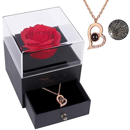 Beferr Infinity Rosen mit Ich Liebe Dich Halskette 100 Sprachen, Ewige Rose Schmuck Geschenk Box für Sie...