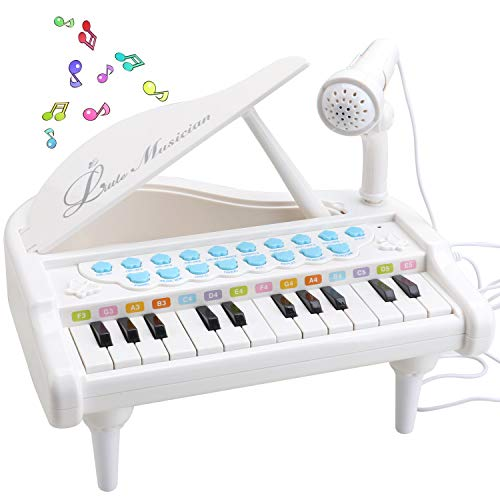 Amy & Benton Klavier Keyboard Spielzeug ab 1 2 3 Jahre, 24 Tasten Kinder Musikspielzeug mit Mikrofon,...