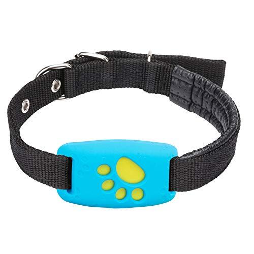 OPALLEY GPS Dog 4 - Tractive GPS Tracker für Hunde mit Aktivitätstracking und unbegrenzter Reichweite,...