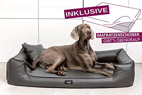 tierlando® Orthopädisches Hundebett Goofy VISCO   ~ inkl. Matratzenschoner ~   Anti-Haar Kunstleder...