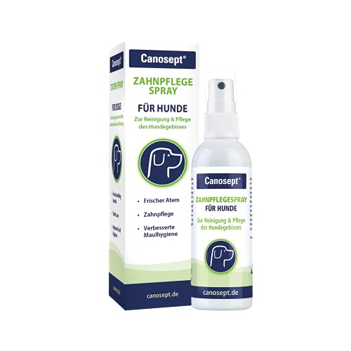 Canosept Zahnpflegespray für Hunde 100ml - Für effektive Zahnreinigung, Zahnpflege, Mundhygiene und...