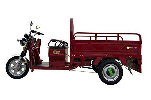 GinkGo C1 E-Cargo-Trike rot E-Lastenrad E-Lastentrike E-Lastendreirad Straßenzulassung Lastenscooter...