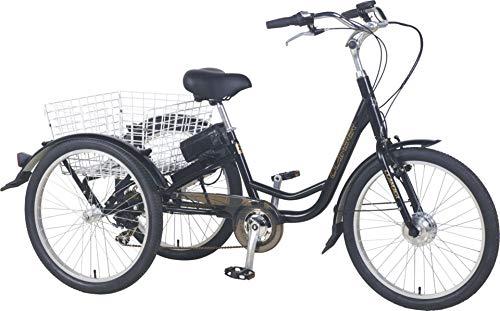 """E-Lastenrad """"E-Donkey Plus"""", 250 Watt, Lastenfahrrad Transport, E Bike, Elektro-Fahrrad, Lastenrad,..."""