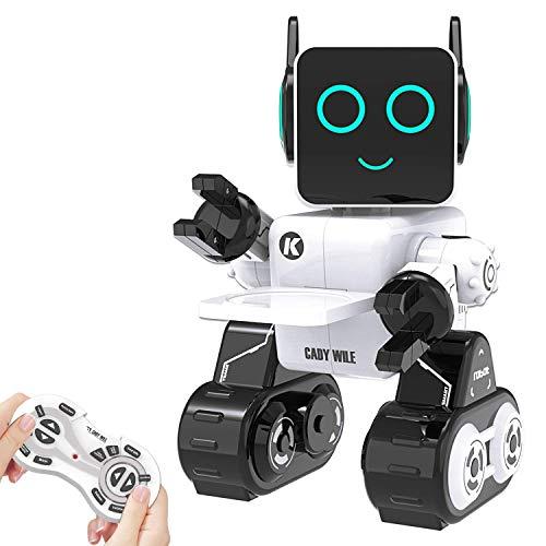 HBUDS Intelligenter Roboter