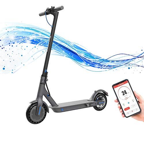 Hoverboards Elektro Scooter Elektroroller E-Scooter Faltbar City Roller Fahrzeug 350 Watt Motor Klappbar...