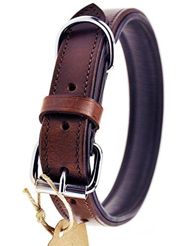Schnüffelfreunde Hundehalsband aus Leder (L - 36-45cm, Braun)