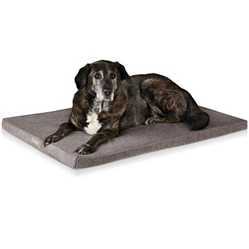 Orthopädisches Hundekissen von ONVAYA®