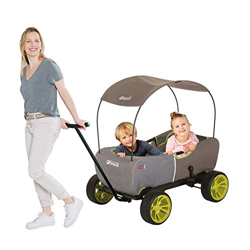 Hauck Eco Mobil - Bollerwagen Handwagen Transportwagen, für 2 Kinder Geeignet, mit Sonnendach und...