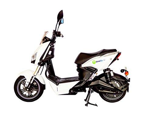 GinkGo R1 Elektroroller mit Straßenzulassung - Zweisitzer - 45 km/h - bis zu 120 km - herausnehmbarer...