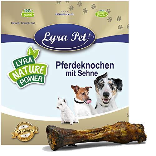 Lyra Pet® 1 Pferdeknochen mit Sehne Kausnack Kauknochen Hundefutter Leckerli