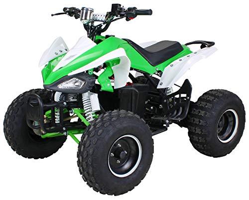 Kinder Elektro Quad S-14 Speedy 1000 Watt Miniquad Kinderfahrzeug Midiquad (Grün/Weiß)