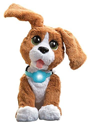 Benni, der sprechende Beagle