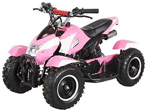 Actionbikes Motors Miniquad Kinder ATV Cobra 49 cc Pocketquad 2-takt Quad ATV Pocket Quad Kinderquad...