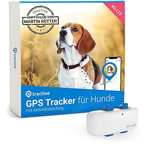 Tractive GPS Tracker für Hunde (2021). Empfohlen von Martin Rütter. Immer wissen, wo dein Hund ist....