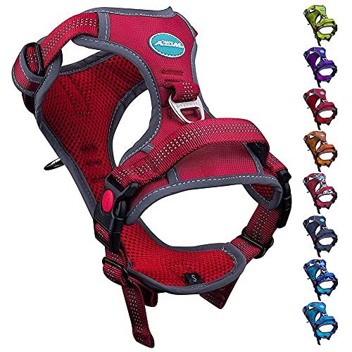 ThinkPet No-Pull Hundegeschirr, Atmungsaktiv Brustgeschirr für Kleine Mittlere Große Hunde, Einstellbar...