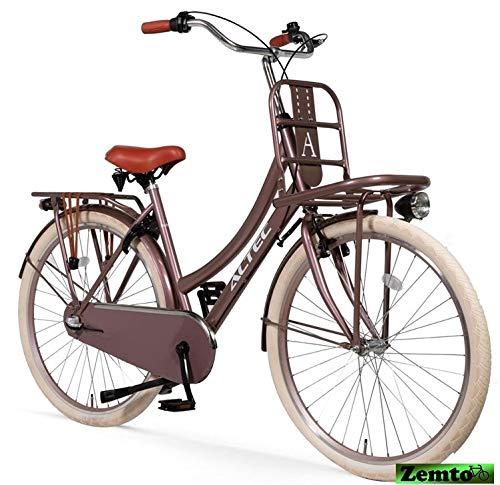Hooptec Altec Dutch 28 Zoll Transportfahrrad 3 Gang 53 cm Rosy-Braun
