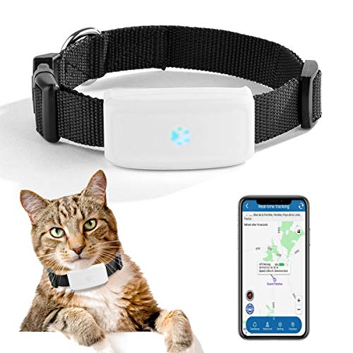 Zeerkeer Mini GPS Locator Echtzeit Kleine Haustier GPS Tracker TK911 für Hunde Katze Tracking Device...