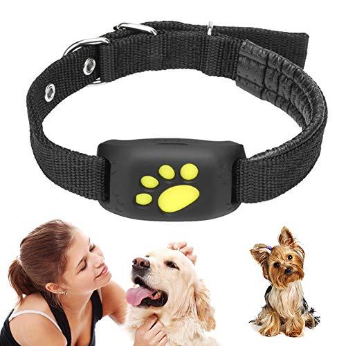 Peaches Stores Haustier-GPS-Tracker, intelligentes Hundekatzenhalsband, Aktivitätsmonitor für...