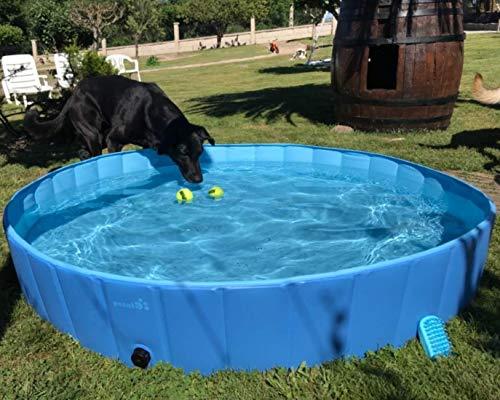 pecute Hundepool Schwimmbad Für Hunde und Katzen Swimmingpool Hund Planschbecken Hundebadewanne...