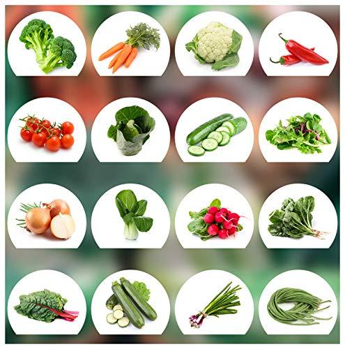 Prademir Gemüse Samen Set - 16 Gemüse Sorten aus Portugal | 100% Natur Saat (Keine Chemie, Gentechnik,...