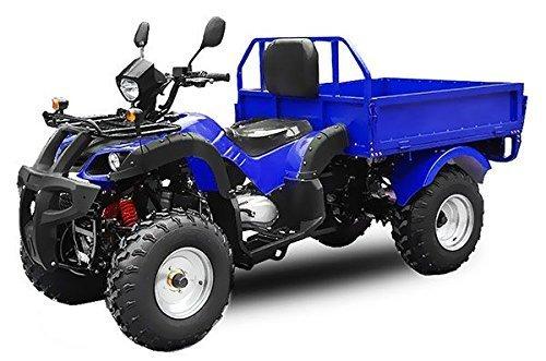 AUFGEBAUT STRAßENZULASSUNG EEC Jinling Dumper 150cc Automatik Kipper Quad ATV (Blau)