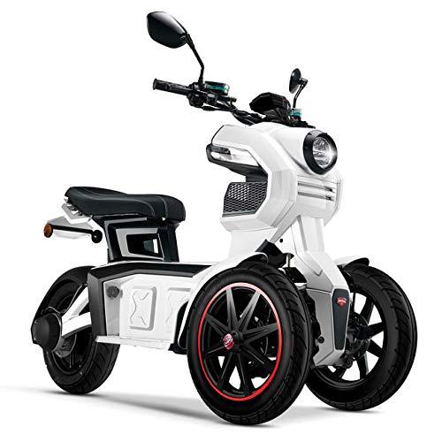 Doohan iTank eGo2 Elektroroller 1560W - 45km/h E-Scooter Elektro-Trike 2 Personen E-Roller 3-Rad...