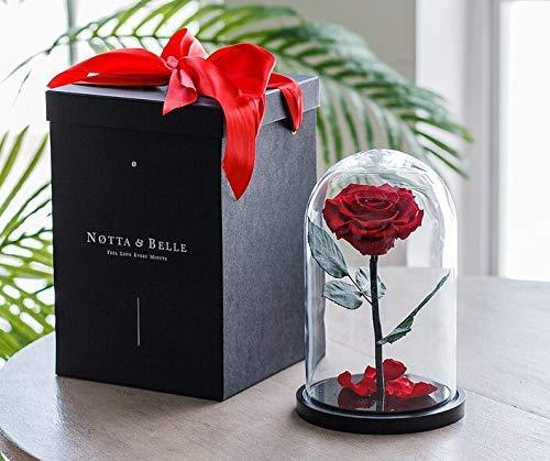 Premium Ewige Rose (Rote, 27 cm.), «Wow!» Effekt Geschenkbox, Bonita Rose Bud Quality, Schöne und das...