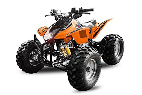 125cc Grizzly Quad Offroad Automatik mit Rückwärtsgang Kinderquad ATV Midiquad Bike Buggy (Blau)