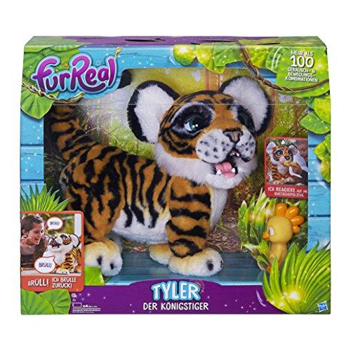 Tyler, der Königstiger